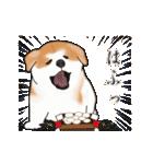 秋田犬の年末年始スタンプ(個別スタンプ:18)