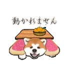秋田犬の年末年始スタンプ(個別スタンプ:20)