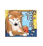 秋田犬の年末年始スタンプ(個別スタンプ:22)