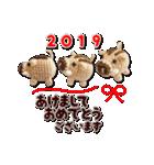 あみぐるみネコ達のお正月2019(個別スタンプ:06)