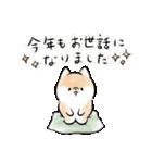 ほんわかしばいぬ<お正月>(個別スタンプ:01)