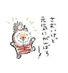 ほんわかしばいぬ<お正月>(個別スタンプ:03)