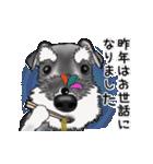 シュナウザー犬の年末年始スタンプ(個別スタンプ:2)