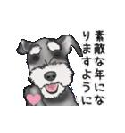 シュナウザー犬の年末年始スタンプ(個別スタンプ:4)