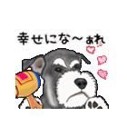 シュナウザー犬の年末年始スタンプ(個別スタンプ:11)