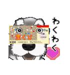 シュナウザー犬の年末年始スタンプ(個別スタンプ:15)