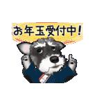 シュナウザー犬の年末年始スタンプ(個別スタンプ:16)