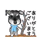 シュナウザー犬の年末年始スタンプ(個別スタンプ:19)