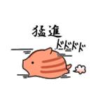 *いのしし年*うり坊大福【お正月】(個別スタンプ:15)