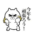 目ヂカラ☆にゃんこ【お正月・年末年始】(個別スタンプ:14)