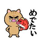 目ヂカラ☆いのしし【2019年お正月・亥年】(個別スタンプ:17)