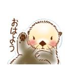 ふわふわラッコ(個別スタンプ:01)