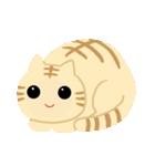 猫の感情...(個別スタンプ:01)