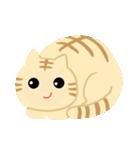 猫の感情...(個別スタンプ:02)