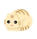 猫の感情...(個別スタンプ:03)