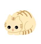 猫の感情...(個別スタンプ:04)