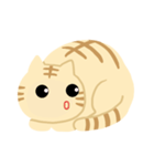 猫の感情...(個別スタンプ:05)