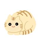 猫の感情...(個別スタンプ:07)