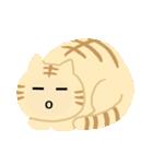 猫の感情...(個別スタンプ:11)