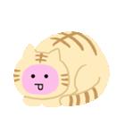 猫の感情...(個別スタンプ:17)