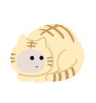 猫の感情...(個別スタンプ:24)