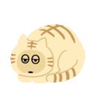 猫の感情...(個別スタンプ:26)