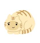 猫の感情...(個別スタンプ:27)