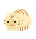 猫の感情...(個別スタンプ:28)