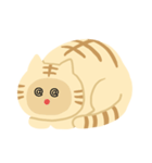 猫の感情...(個別スタンプ:29)