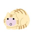 猫の感情...(個別スタンプ:34)