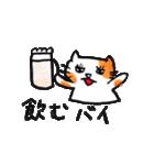 九州方言 ・熊本弁猫の肥後たま(個別スタンプ:14)