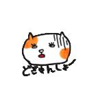 九州方言 ・熊本弁猫の肥後たま(個別スタンプ:23)