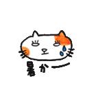 九州方言 ・熊本弁猫の肥後たま(個別スタンプ:25)