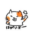 九州方言 ・熊本弁猫の肥後たま(個別スタンプ:26)