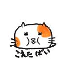 九州方言 ・熊本弁猫の肥後たま(個別スタンプ:30)
