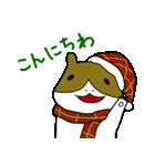 冬のモルモットさん(個別スタンプ:01)