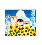 よく動く★お祝い&春夏秋冬・季節の挨拶(個別スタンプ:15)