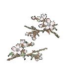 四季の草花(陶芸家描き下ろしシリーズ)(個別スタンプ:01)