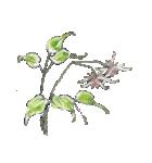 四季の草花(陶芸家描き下ろしシリーズ)(個別スタンプ:03)