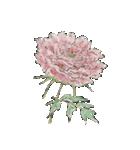 四季の草花(陶芸家描き下ろしシリーズ)(個別スタンプ:04)