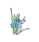 四季の草花(陶芸家描き下ろしシリーズ)(個別スタンプ:05)