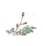 四季の草花(陶芸家描き下ろしシリーズ)(個別スタンプ:25)