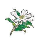 四季の草花(陶芸家描き下ろしシリーズ)(個別スタンプ:33)