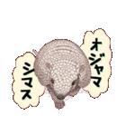 動物スタンプ 【 ZOO.Ⅱ】(個別スタンプ:05)