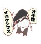動物スタンプ 【 ZOO.Ⅱ】(個別スタンプ:07)