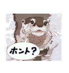 動物スタンプ 【 ZOO.Ⅱ】(個別スタンプ:09)
