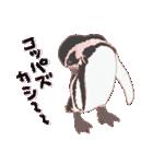 動物スタンプ 【 ZOO.Ⅱ】(個別スタンプ:12)
