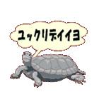 動物スタンプ 【 ZOO.Ⅱ】(個別スタンプ:18)