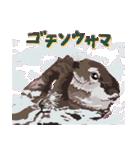 動物スタンプ 【 ZOO.Ⅱ】(個別スタンプ:25)
