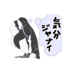 動物スタンプ 【 ZOO.Ⅱ】(個別スタンプ:27)